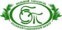 Логотип компании Велес